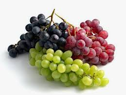 Searching innovative solutions to add/mantain color in table grapes